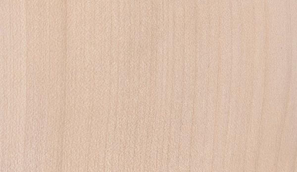 acer-pseudoplatanus hout