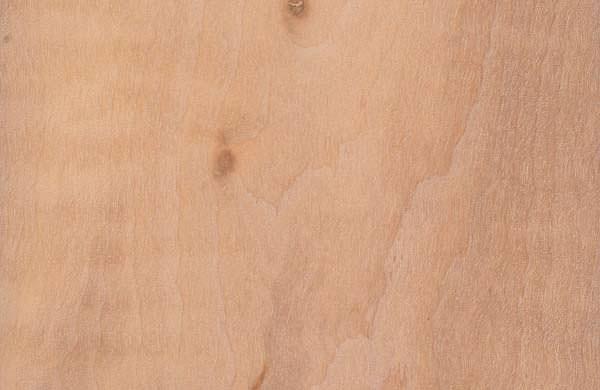 alnus-glutinosa hout