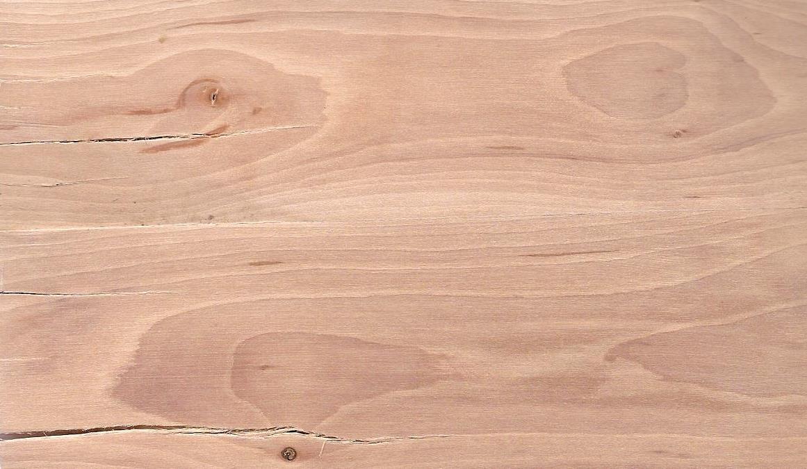 crataegus hout